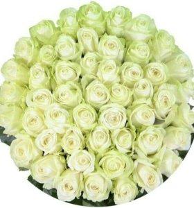 Букет 51 белой розы