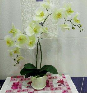 Имитация орхидеи!