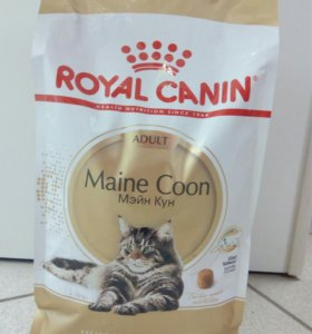 Royal Canin Maine Coon 2 кг
