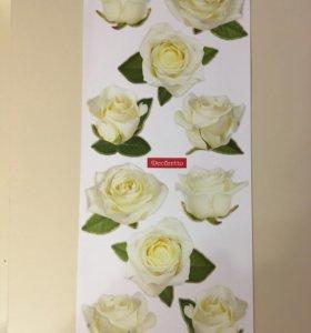 Виниловые наклейки Розы,размер 47*20