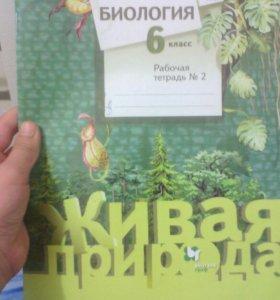 Рабочая тетрадь по Биологии.