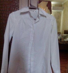Белая классическая рубашка