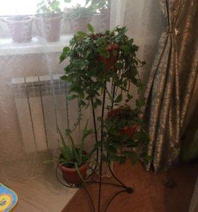 Подставка для цветов , на три горшка