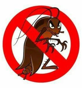 Уничтожения клопов тараканов муравьев
