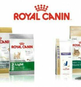 Royal Canin для кошек и собак