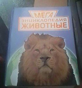 Книга. Большая инцеклопедия