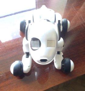Робот-собака Zoomer