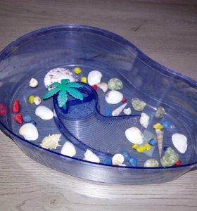 Аквариум для декоративных черепашек!