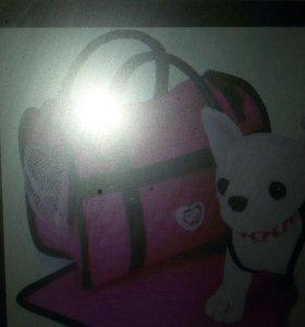 Собачка чичелаф с сумкой