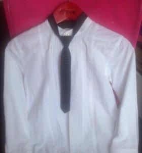 Рубашка Zara boys в подарок галстук Next