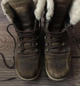 Ботинки Ecco 37