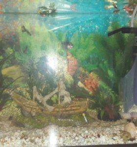 Продам 2 аквариума