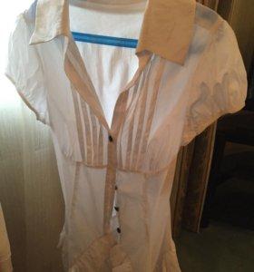 Водолазки и блузы