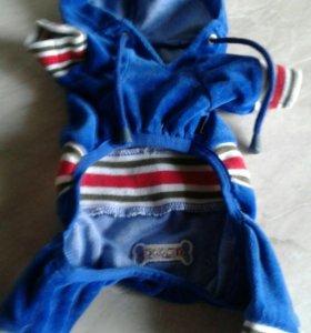Одежда на небольшую собачку