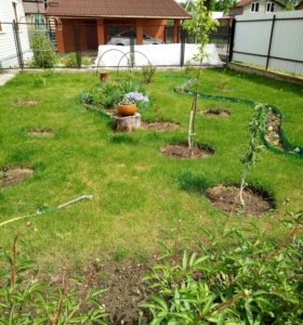 Покос травы и вырубка деревьев.