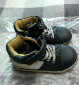 Ботинки Баркито