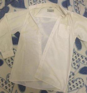 Рубашка TSAREVICH