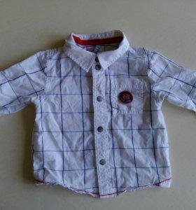 Рубашка Barkito 74