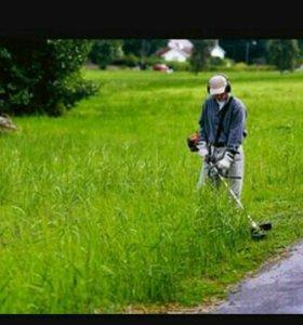 Кошение травы
