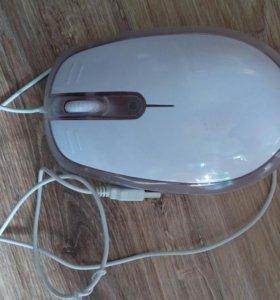 Большая мышка