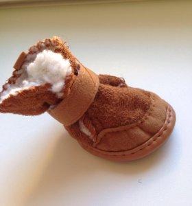 Обувь для собаки(средняя порода)