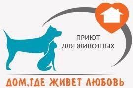 Передержка для домашних животных (мини-приют)