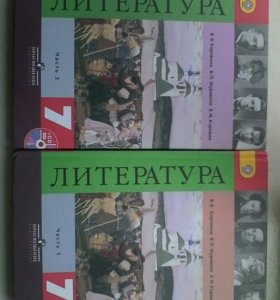 литература за 7 класс