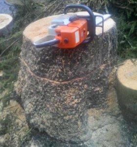 Удаление деревьев любой сложности, а также любые р