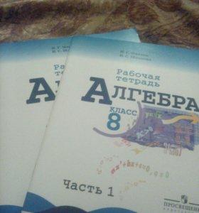Алгебра рабочая тетрадь, 8 класс, 2 части