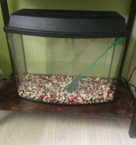 Продам аквариум новый, камни 3 цветов в подарок