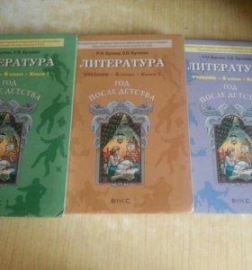 Учебники литературы 6 класс Бунеев.