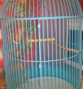 Клетка для птиц 50×30см