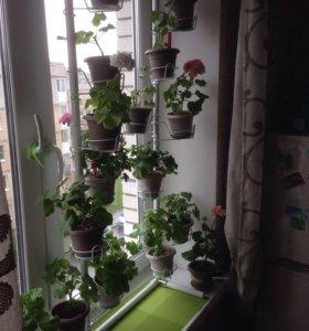 Подставка для цветов подоконник-пол