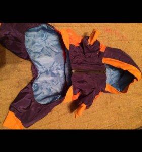 Собачье одежды