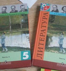 Книжки по литературе и русскому (5 и 5-9 классы)