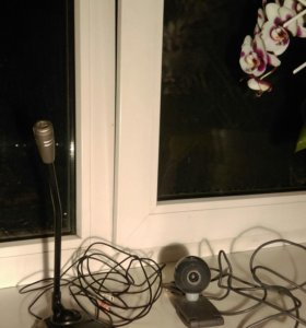 Микрофон и веб-камера