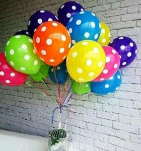 Воздушные шары в горошек по оптовой цене