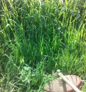 Скашу траву