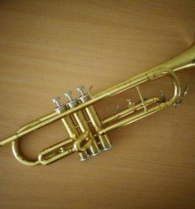 Trumpet/Труба