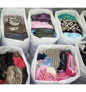 Вещи (юбка, кофта, брюки, джинсы, шорты, платье)