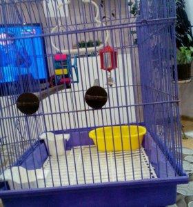 Клетка для домашних птиц