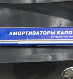 Амортизаторы капота шкода Skodа Octavia a7