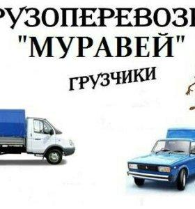 Грузоперевозки Муравей