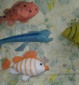 Рыбки из коллекции морские чудовища