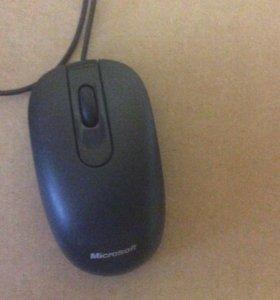 Мышь бу