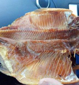 Холодного копченая рыба