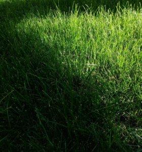 Участок, до 6 сот., сельхоз (снт или днп)