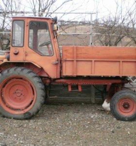 Продаю трактор т 16 м