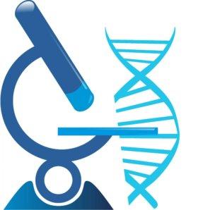 Судебные и информационные ДНК анализы.