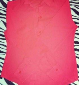 Блузка (новая)